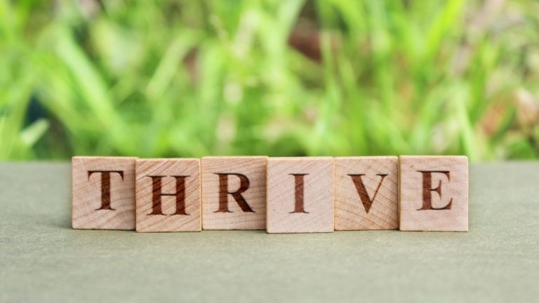 How to Grow and Thrive Through a Difficult Time